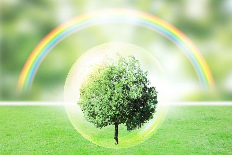 自然の価値観と人間の価値観の違いで自分が分かる